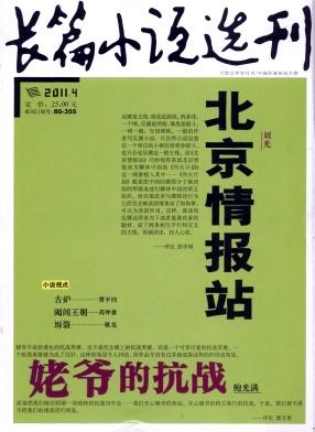 长篇小说选刊杂志