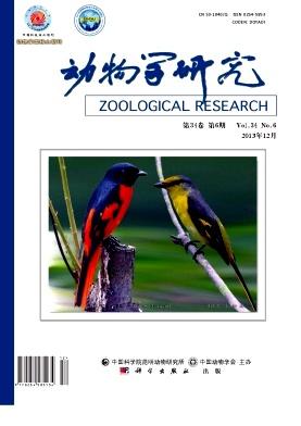 动物学研究杂志