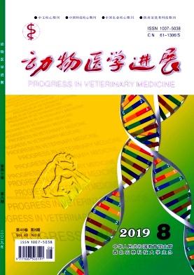 动物医学进展杂志