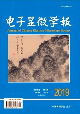 电子显微学报杂志