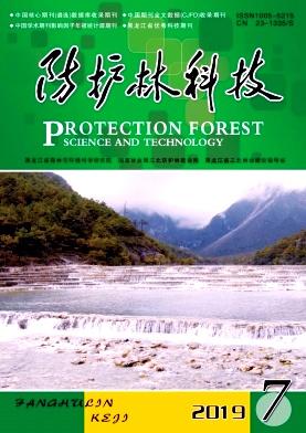 防护林科技杂志