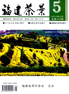 福建茶叶杂志