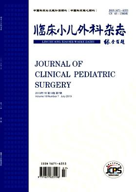 临床小儿外科杂志