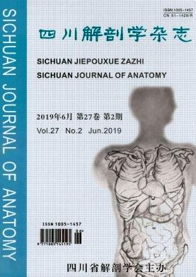 四川解剖学杂志