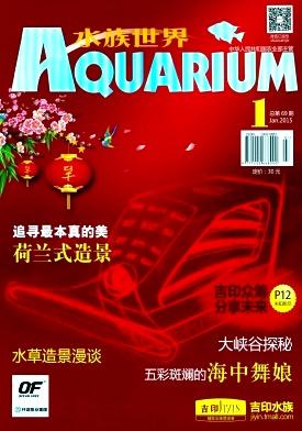 水族世界杂志