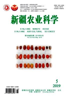 新疆农业科学杂志