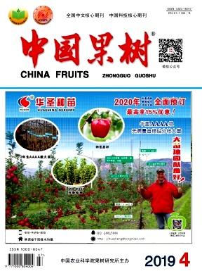 中国果树杂志