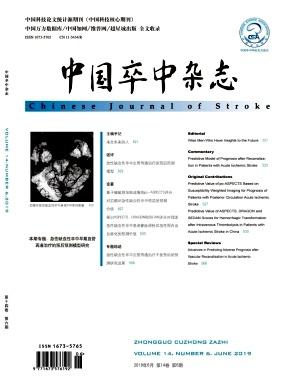 中国卒中杂志